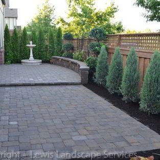Plant Idea Blue Arrow Juniper Back Yard Makeover