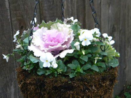 Gardening in Decorating love Forum  Caferocks Home