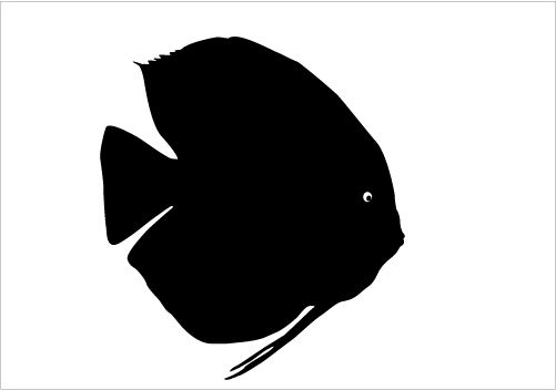 Trout Fish Silhouette