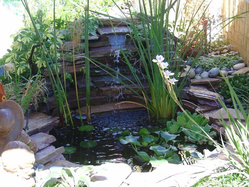 Fuentes de agua en jardines fotos de variedad de fuentes for Estanque hidroneumatico