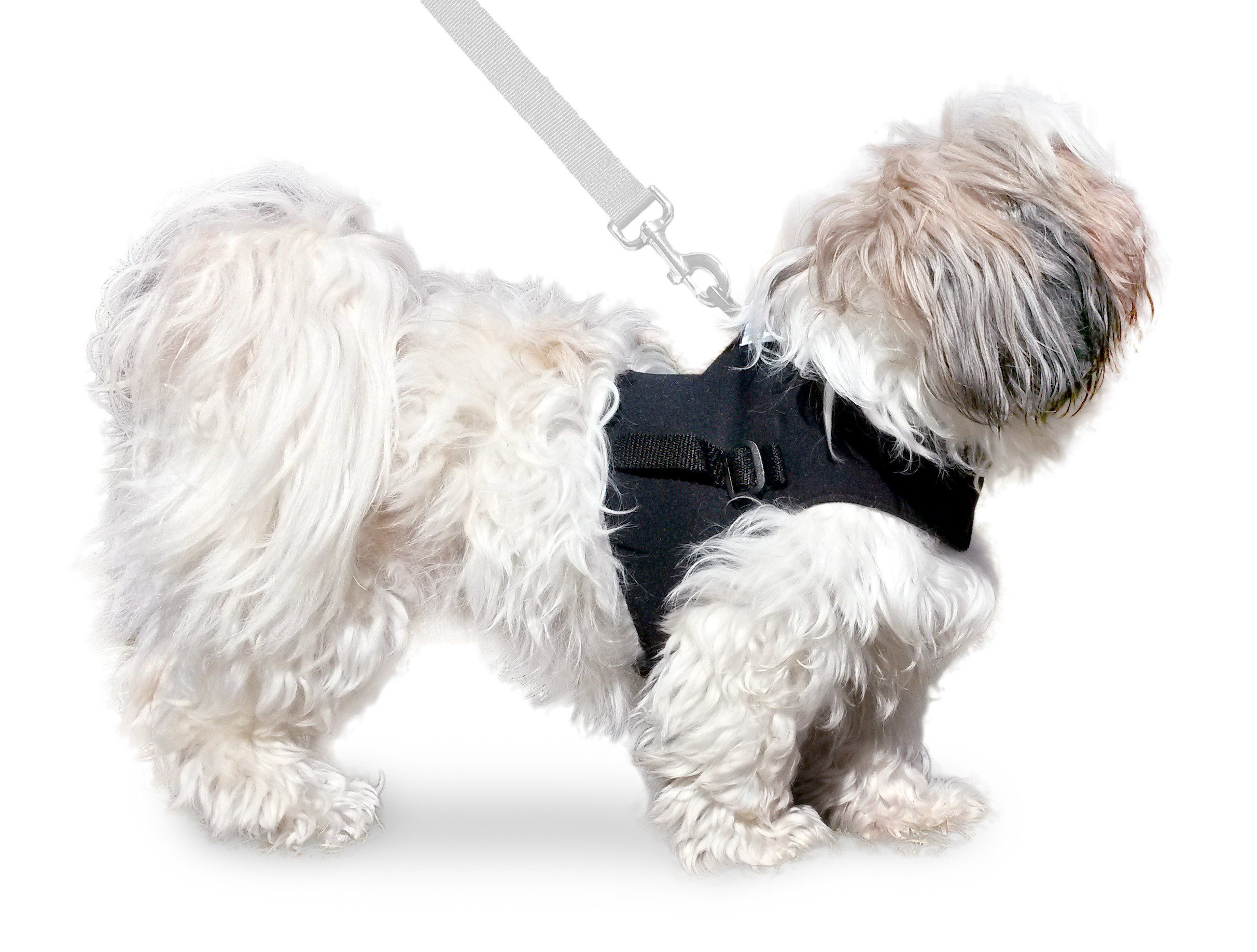 Small Front Vest Harness For Small Walkin Wheels Wheelchair Dog Wheelchair Dog Vest Dogs