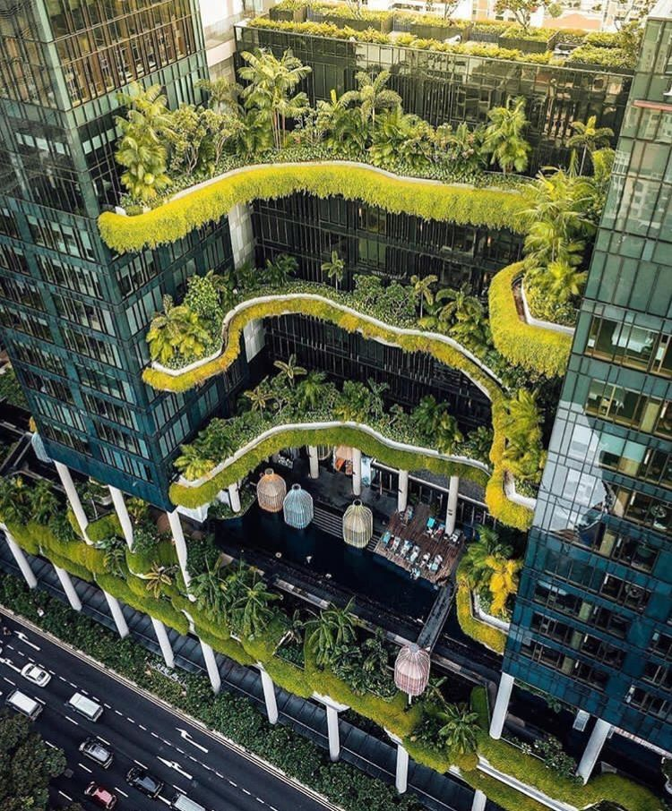 Singapore In Touch With Nature City Cities Buildings Photography Singapore Photos Architecture Photo Green Architecture