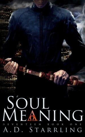 Soul Meaning by AD Starrling available free for limited time on Nook and Kindle