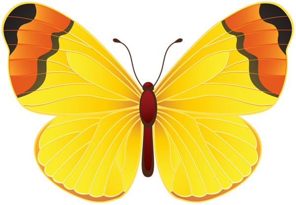 Yellow Butterfly Png Clip Art Transparent Image Beautiful Butterflies Art Butterfly Art Painting Butterfly Painting