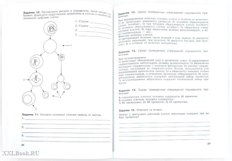 Домашнее задания по геометрии 8 класс в.г.апостолова