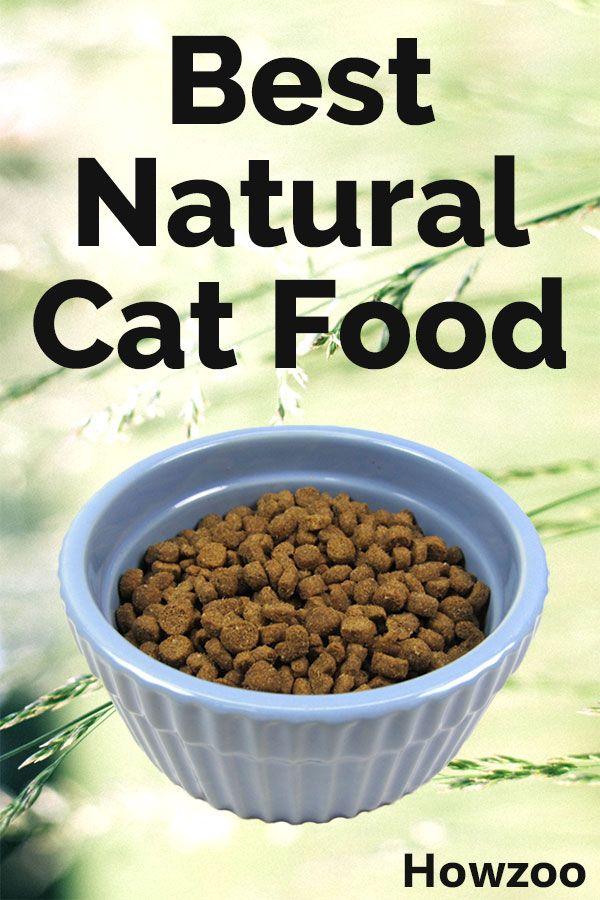 Best Natural Cat Food Healthiest Dry & Wet Brands