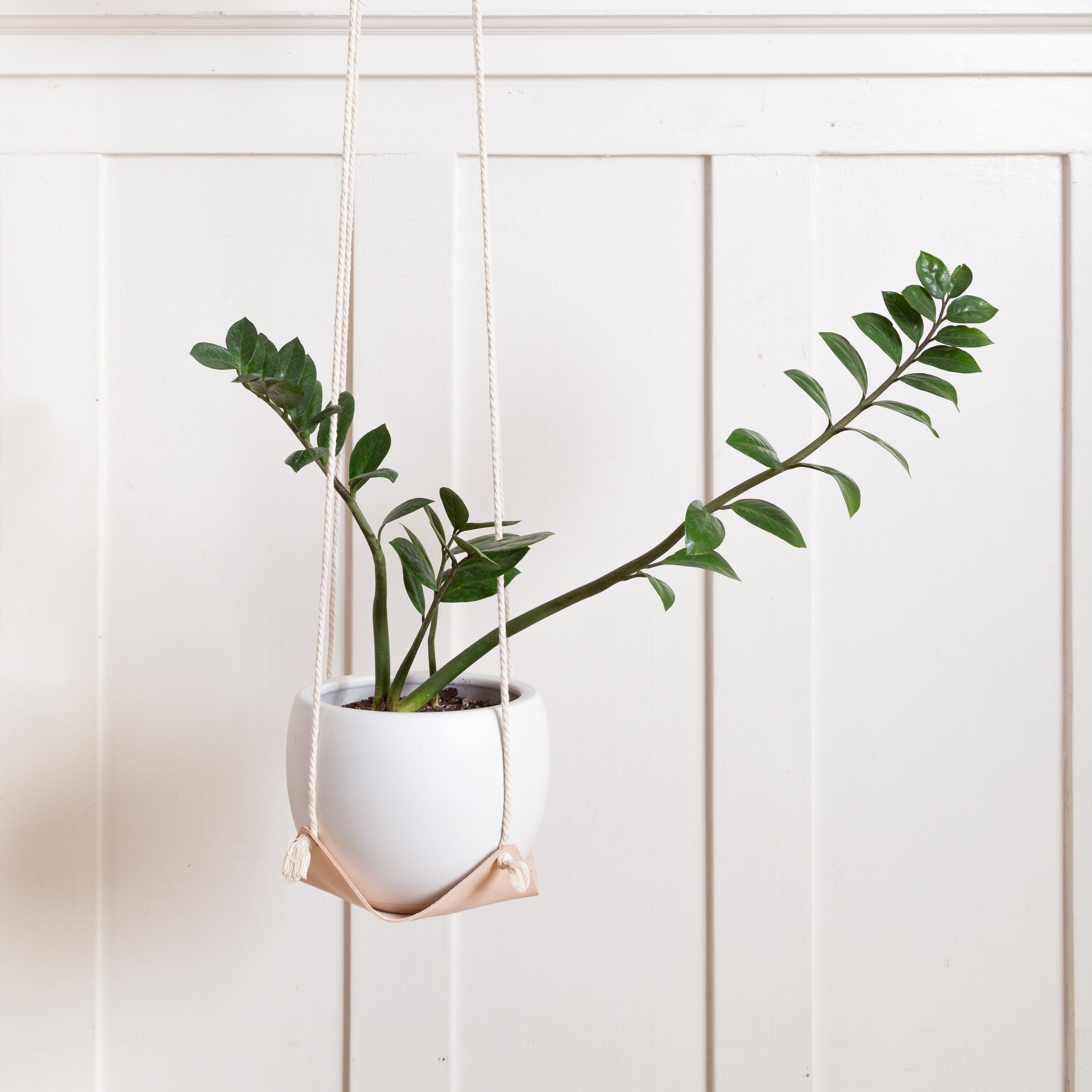Large Leather Plant Hammock - Veg Tan / Large (8 x 8) / 23