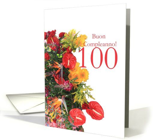 100th birthday italian card my greeting card universe pinterest 100th birthday italian card bookmarktalkfo Gallery