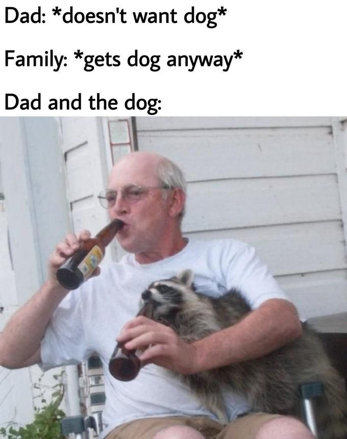 Dad And The Dog Memes For Dads Who Didn T Want Dogs Funny Dog Memes Funny Relatable Memes Funny Pictures