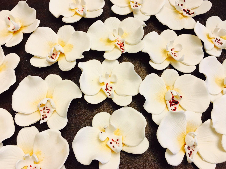 6 Fondant Orchids 6 Gumpaste Orchids Edible Orchid Edible Etsy Orchid Flower Edible Flowers Fondant Flowers