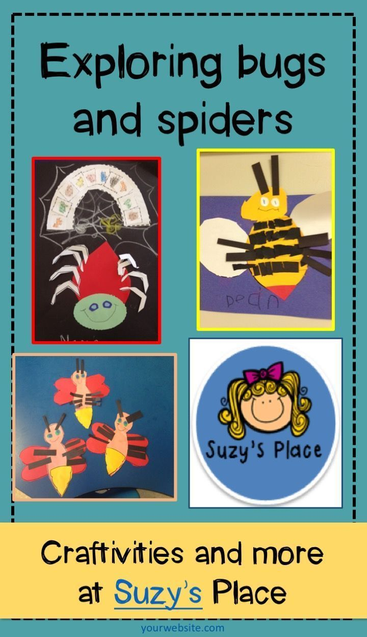 Insects and Spiders - Craftivities and Activities | Bee facts, Venn ...