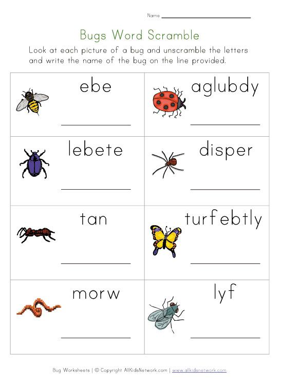 1000+ images about Bugs on Pinterest | Vocabulary worksheets, Life ...