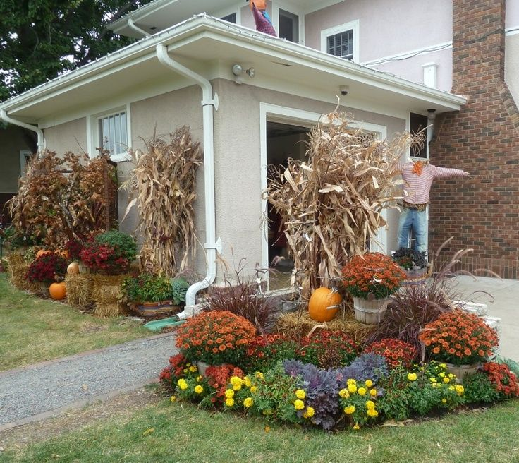 Fall decorating with hay bales and mums cornstalks hay for Bales of hay for decoration