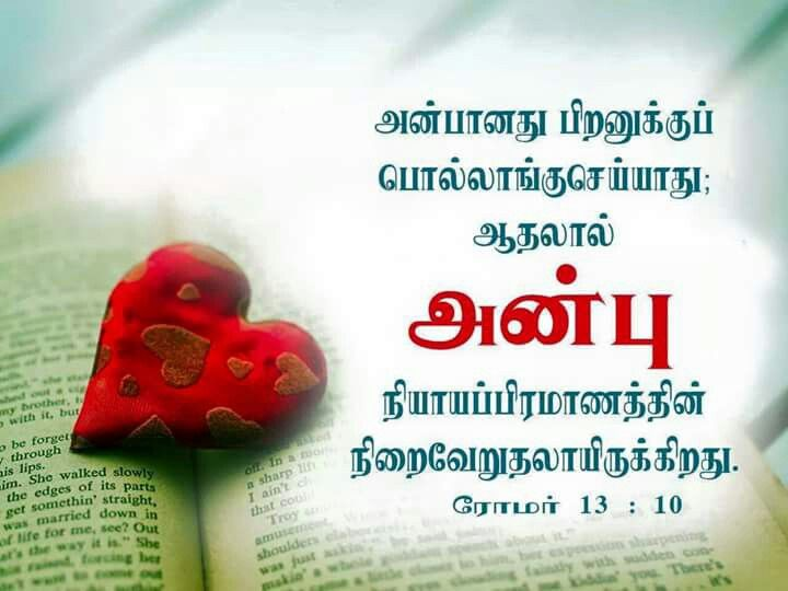 Pin On Tamil Bible Verse