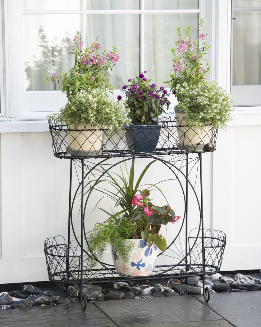 Wirework plant stand bohemian decor pinterest plants for Indoor flower design