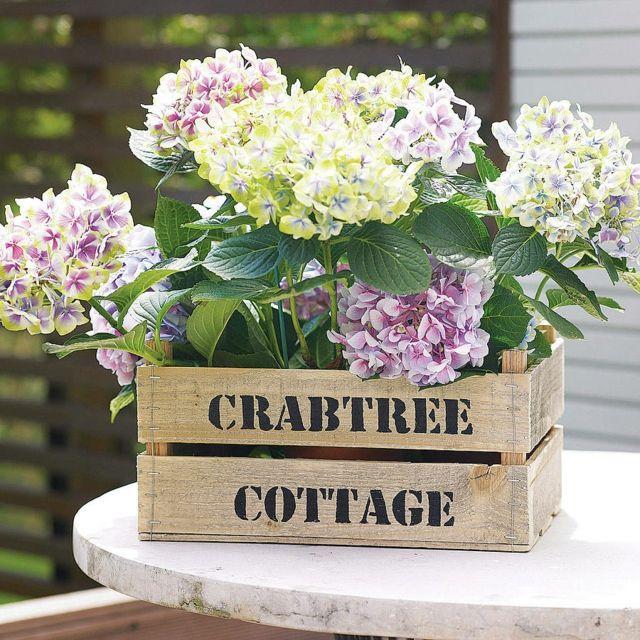Tisch Pflanzkübel Holz Kiste Marmortisch Lila Weiß | Garten ... Miniaturgarten Pflanzkubel Balkon