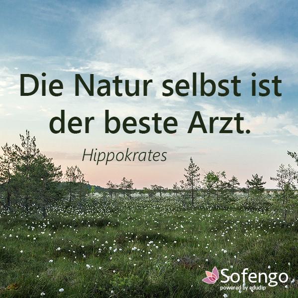 Die Natur Selbst Ist Der Beste Arzt Hippokrates Hippokrates Zitate Zitate Spruche