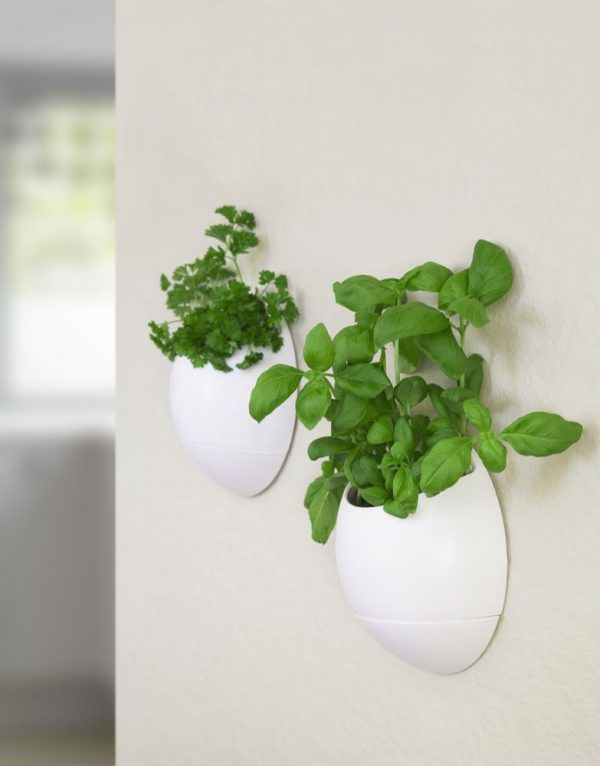 The Big List Of Self Watering Planters For Stylish Gardening Anywhere. Herb  WallSelf ...