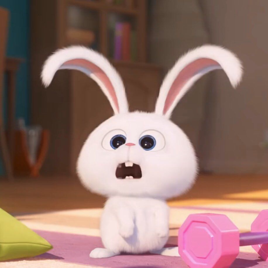 chocolala (เรียนหนักมากㅜㅜ) on Twitter in 2020   Bunny ...