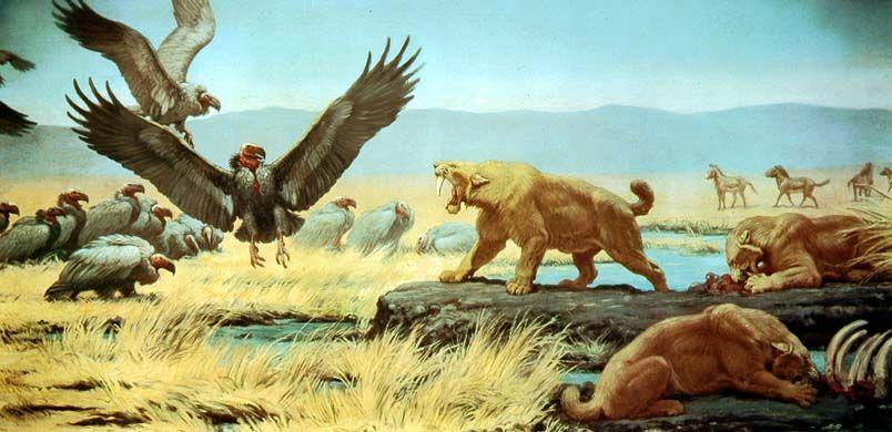 Rancho La Brea Tar Pools, Cenozoic era. A Pleistocene ...