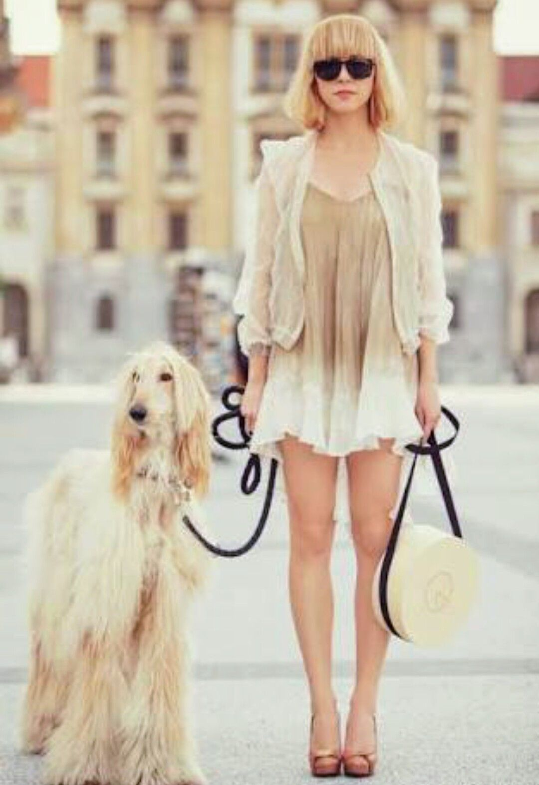 Pin by Dea Mendonca on love towards pets Afghan hound