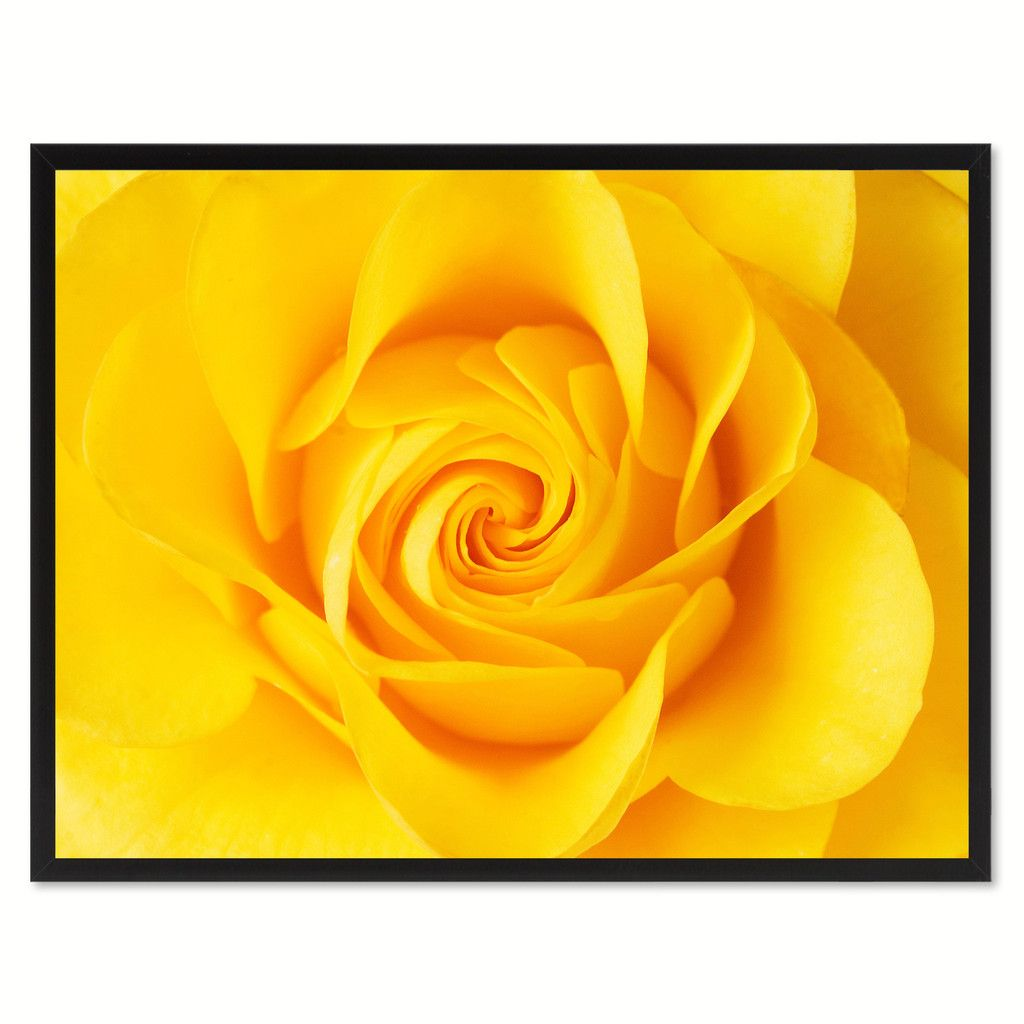 Yellow Rose Flower Framed Canvas Print Home Décor Wall Art ...