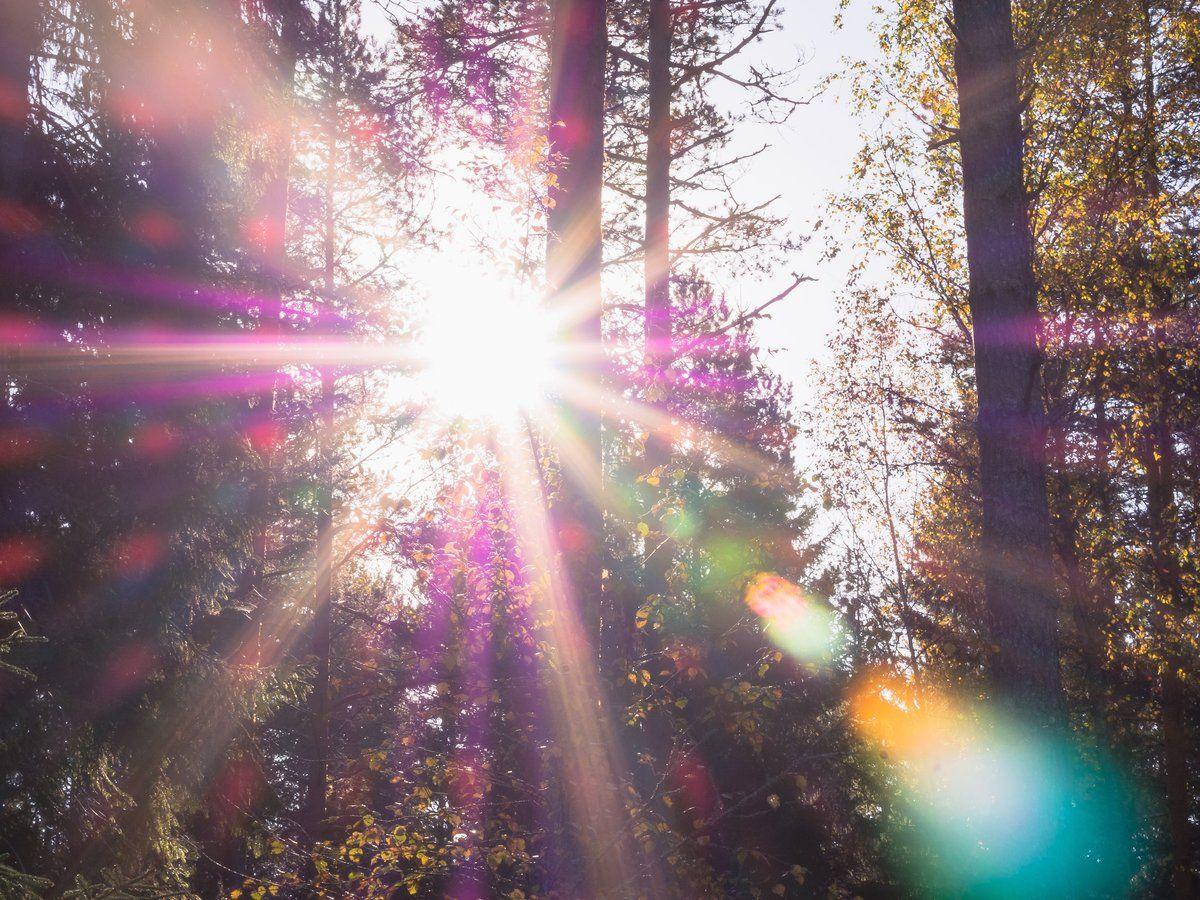 блики солнца картинки гасанов осмотрел новое