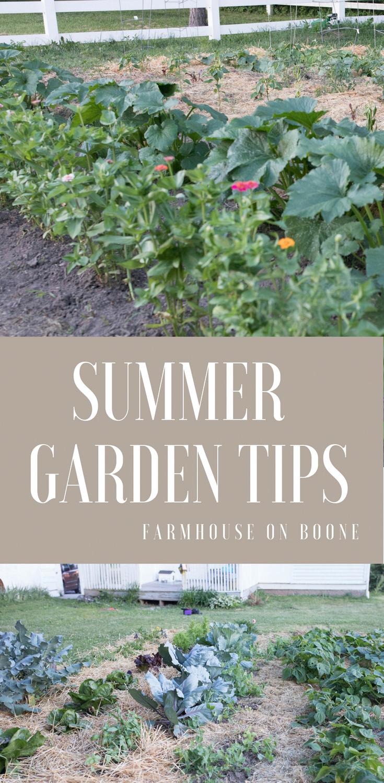 Summer Vegetable Garden Tips Vegetablegardenideas