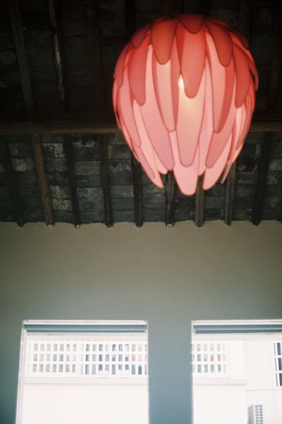 petal lamp - coat hanger or wire petals are covered with nylon and shaped around bare bulb fixture - lot of possibilities