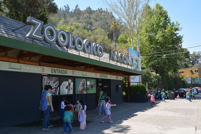 National Zoo, Santiago, Chile (With images)   San cristobal, Chile ...