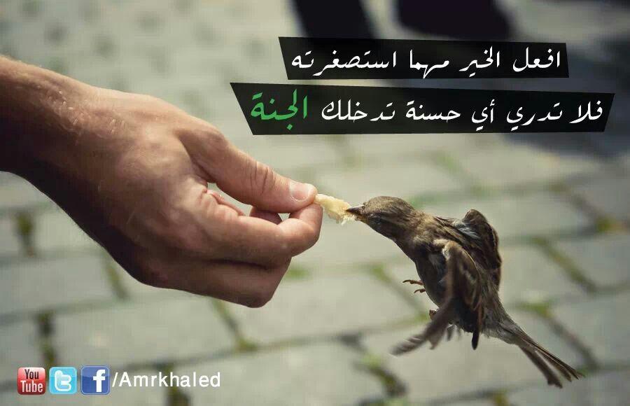 افعل خير Believe In God Islam If I Stay