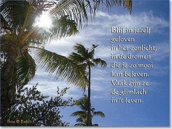 Citaten Geloven In Jezelf : Blijf in jezelf geloven het zonlicht de dromen die