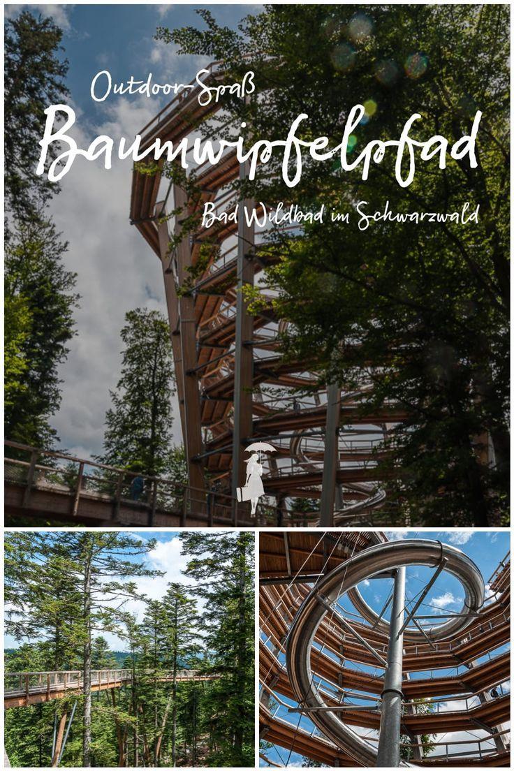 Baumwipfelpfad Schwarzwald & Hängebrücke Wildline in Bad Wildbad