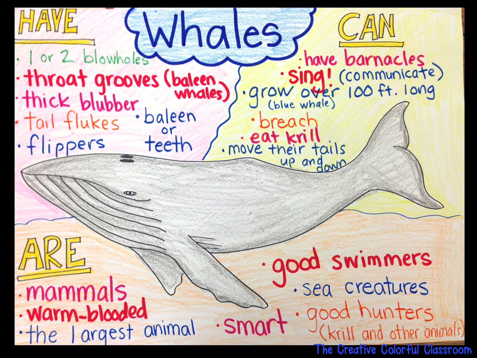 When conducting our ocean research this year, my students and I needed to find a way to record the information we were learning from inform...