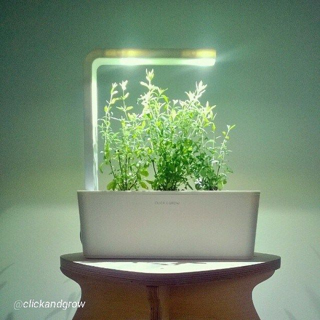 """""""Smart Herb Garden"""" By Click Grow Will Make You Dumb 400 x 300"""