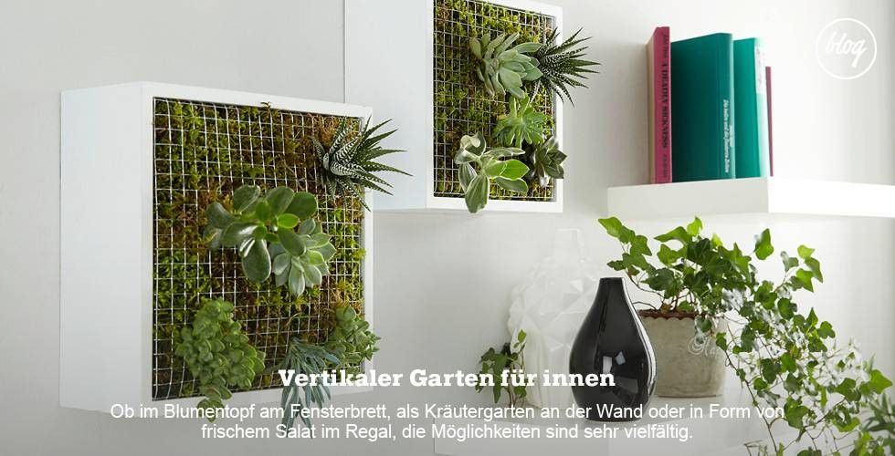 Momax Kuchenplaner Luxury Momax Neueste Wohnideen Online Kaufen Momax Vertikaler Garten Vertikaler Garten Diy Sukkulentenwand
