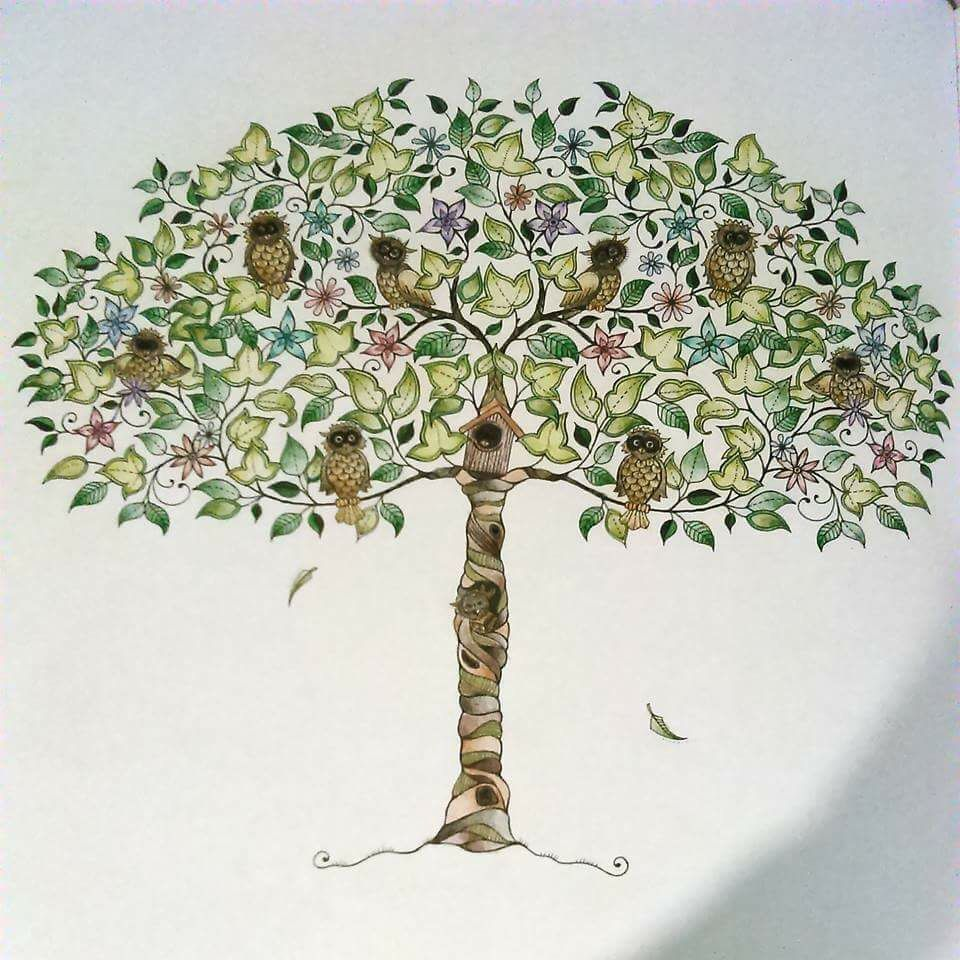 Owl Trree. Secret Garden. Árvore de corujas. Jardim secreto. Johanna ...