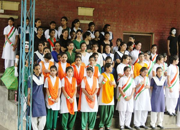 SMC Allahabad | SMC Allahahabad, a golden memory | Coat