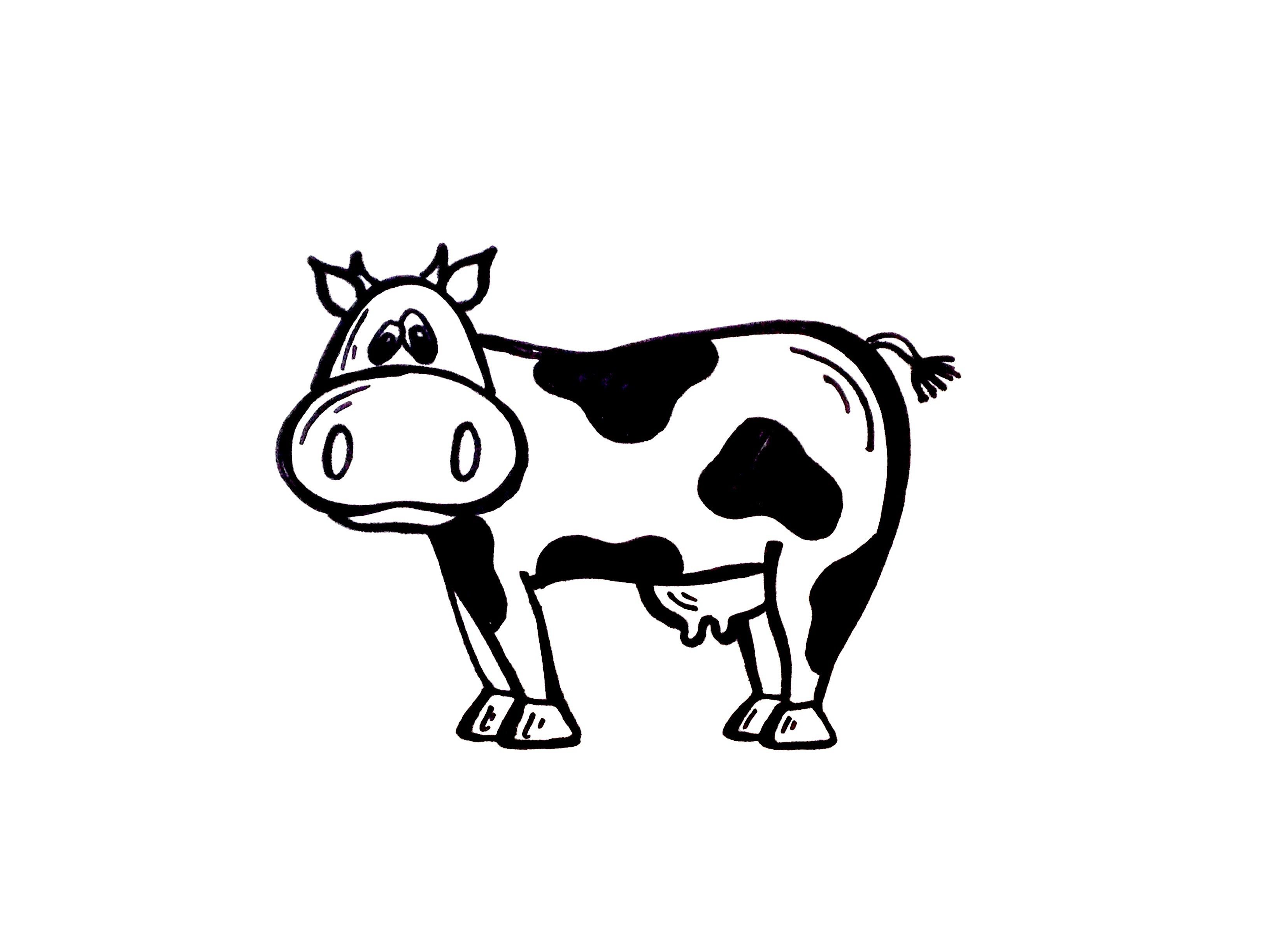 Line Art Photo Tutorial : Drawing lesson: how to draw a cow. grab paper and marker