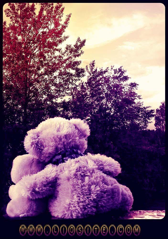 """Massimo Bisotti - Basterebbe dirselo un """"mi manchi"""" [..] Come siamo impacciati nel dire le cose semplici e veramente importanti della vita. Eppure sarebbe facile renderci la vita migliore, almeno nelle piccole cose, quelle veramente importanti!  Buonanotte amici, con """"orsesco"""" abbraccio :)  #MasimoBisotti, #amore, #semplicità, #ItalianQuotes, #CitazioniItaliane, #vita,"""