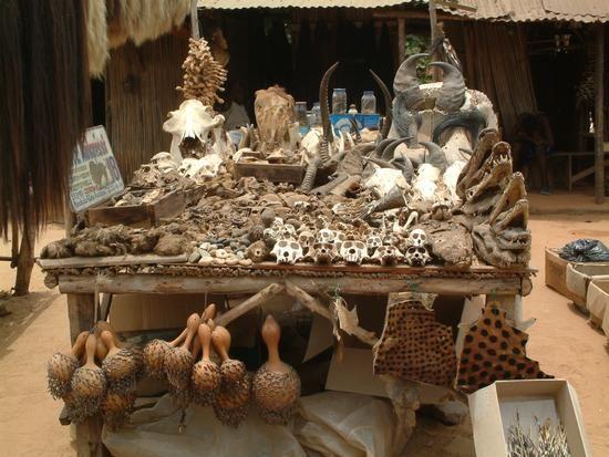 Caribbean Voodoo: Voodoo Market, Cotonou, Benin