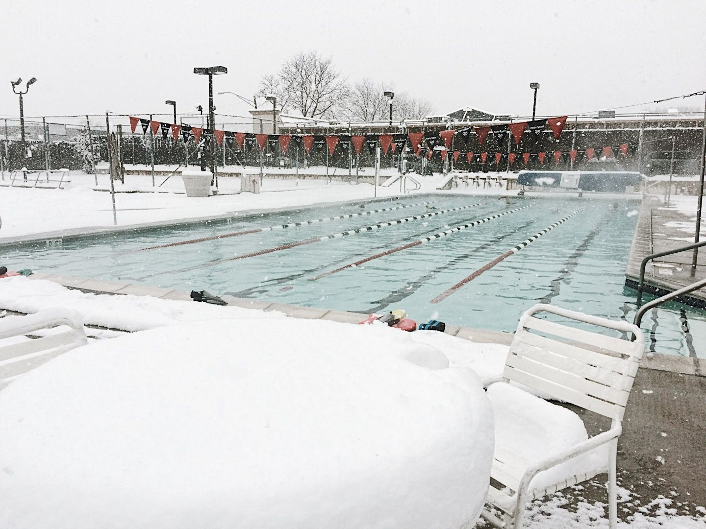 Nothing says 'tis the season like a snowy dip in the best