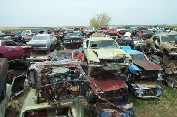 Colorado Mustang Junkyard Aurora Only If These Were