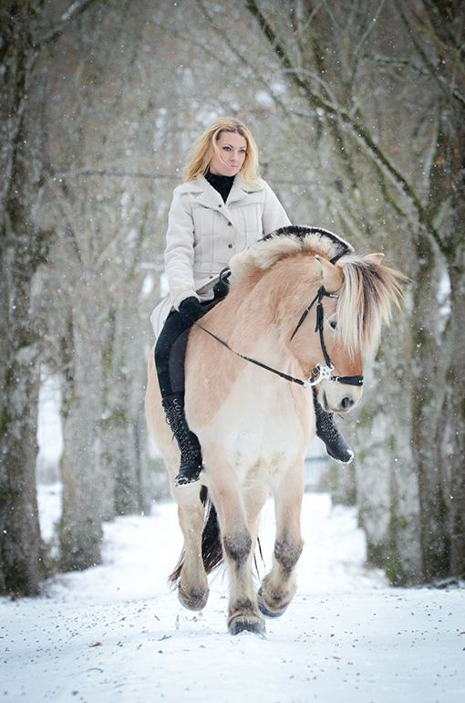 hästshop online rea