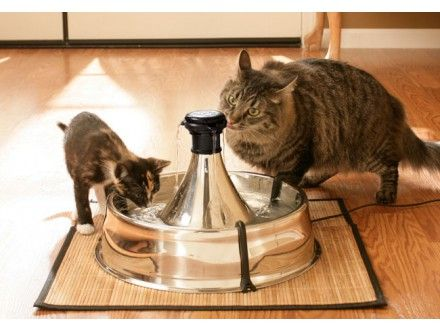 Drinkwell 360 Stainless Steel Pet Fountain Pets Fountain Drinking Fountain
