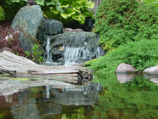 Ponds and Water Features, Built and Installed Appleton