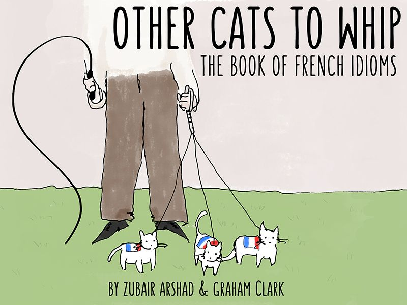 Other Cats to Whip? Learning French Idioms With a Delightful