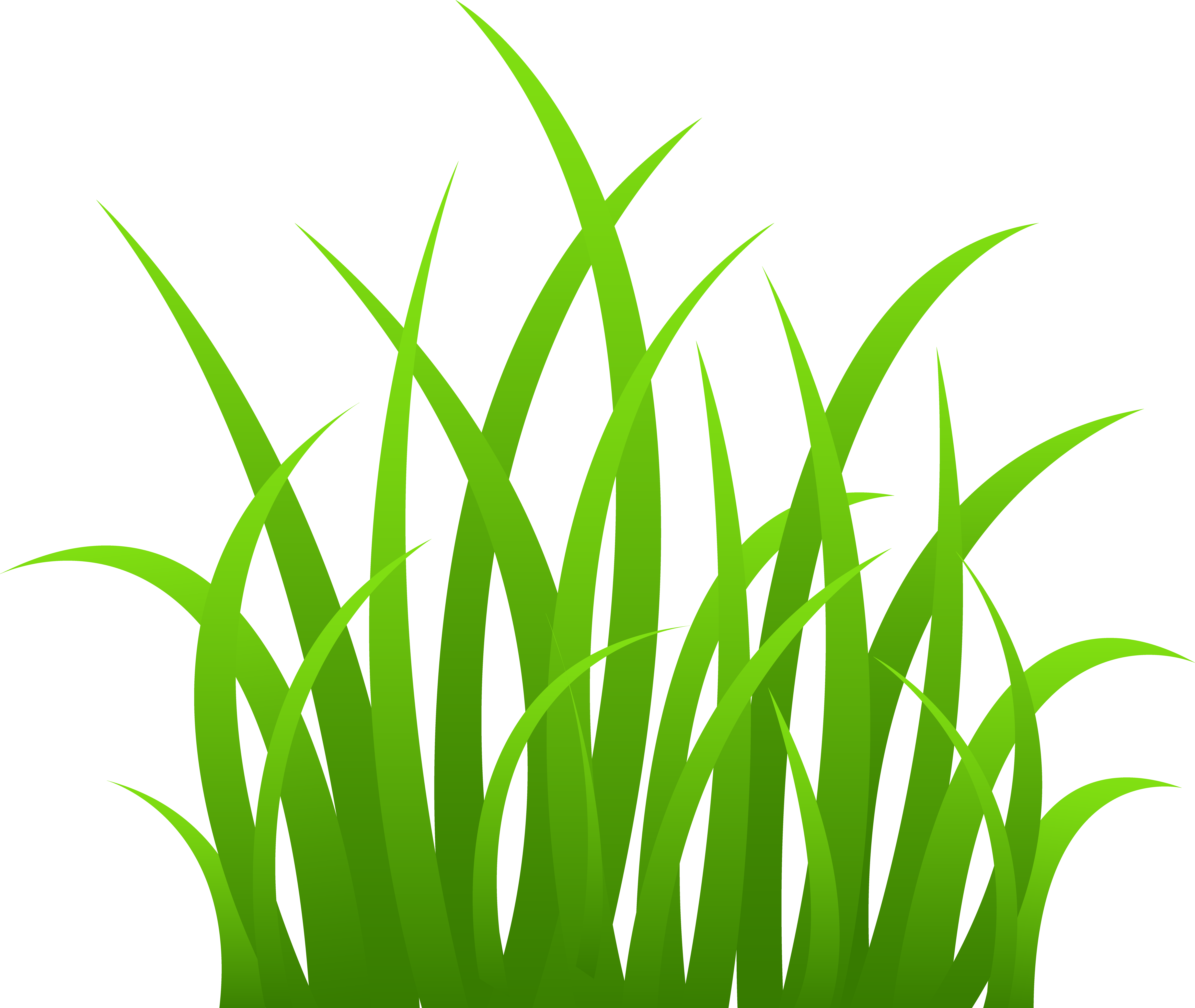grass border clip art google search borders get a greener safer affordable lawn grow it greener chicago call for a estimate on spring clean ups lawn treatments mowing services