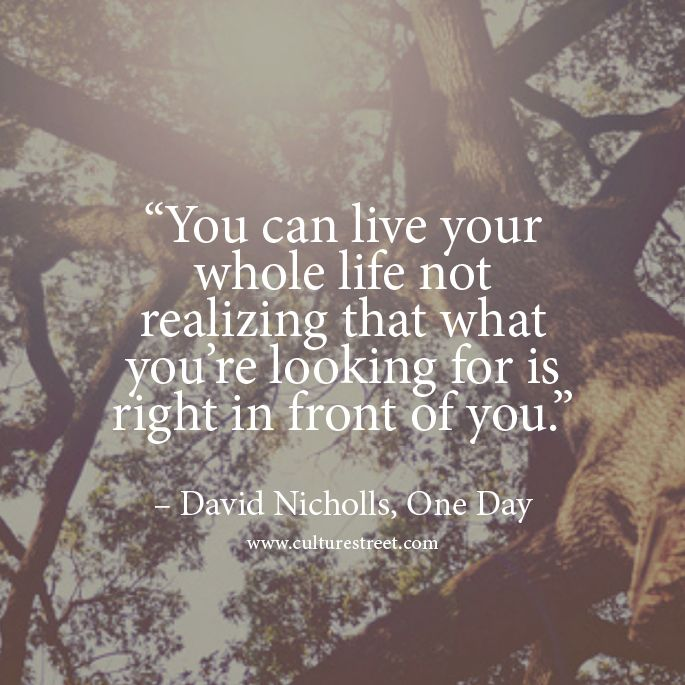 Culture Street Quote Of The Day From David Nicholls Frases Libros Pelis