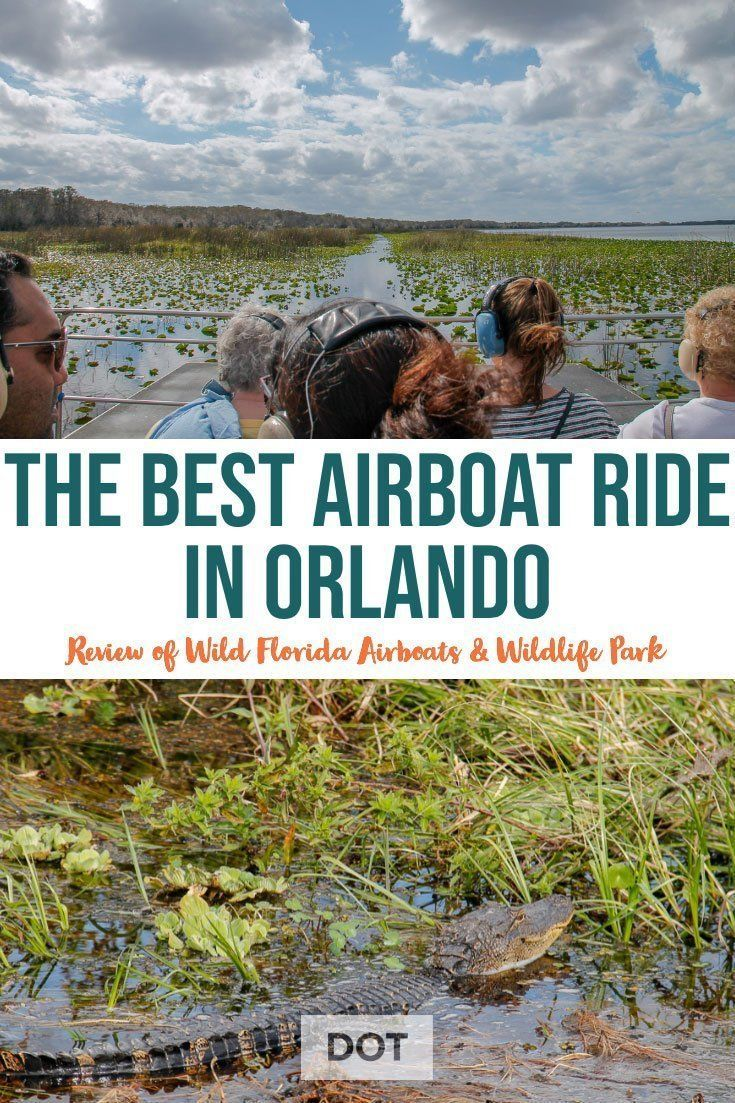 Wild Florida Airboats & Wildlife Park The Best Airboat